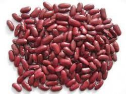 HARICOTS ROUGES 5/1   A001218