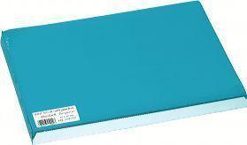 SETS DE TABLE PAPIER COULEUR PASTEL 30X40 X 500 | E11380